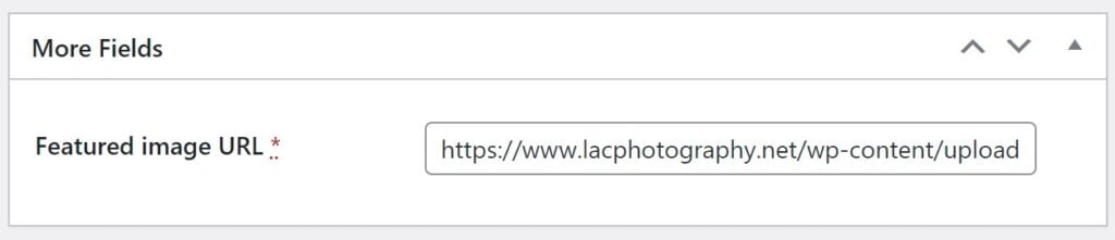 The featured image's URL inserted as a custom field in WordPress